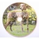 DVD dejte psovi domov